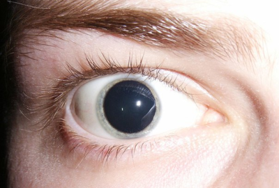 Как определить человека употребяющего амфетамин?